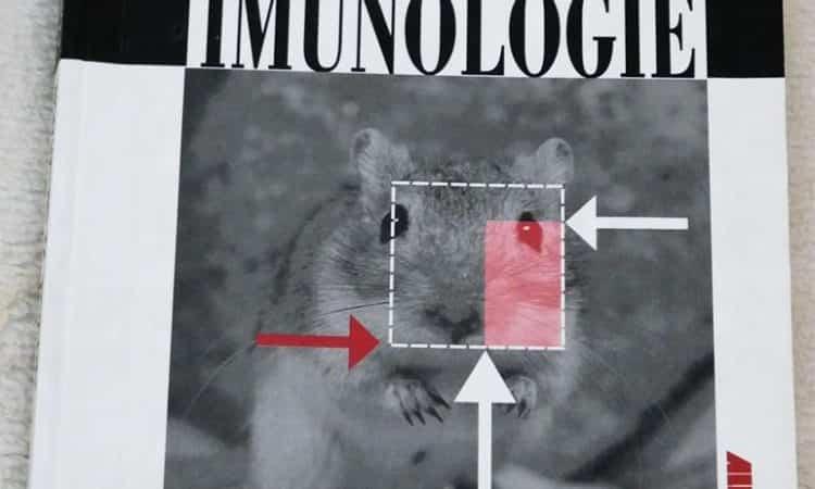 Esențial de Imunologie - Constantin Bâră 6